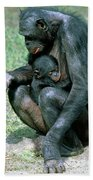 Bonobo Pan Paniscus Nursing Bath Towel