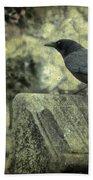 Book Of Wisdom Bath Towel