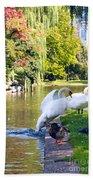 Boston Common Swan Lake Bath Towel