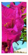 Bougainvillea Beauty Bath Towel