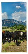 Boulder Beef Bath Towel