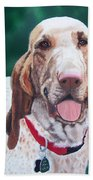 Bracco Italiano  Bath Towel