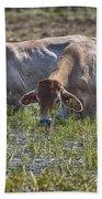Brahman Cattle At The Waterhole Bath Towel