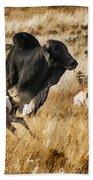 Brahma Bull Meets The Pronghorn Bath Towel