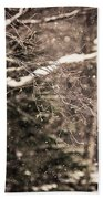 Branch In Forest In Winter Bath Towel
