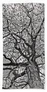 Branches Bath Towel