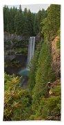Brandywine Falls Plunge Bath Towel
