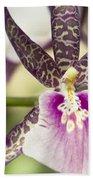 Bratonia Miltassia Charles M Fitch Izumi Orchid Hawaii  Bath Towel