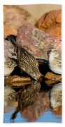 Brewers Sparrows At Waterhole Bath Towel