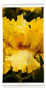 Bright Bright Spring Yellow Iris Flower Fine Art Photography Print  Bath Towel