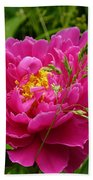 Bright Pink Blossoms Bath Towel