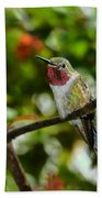 Brilliant Color Of The Ruby-throated Hummingbird Bath Towel
