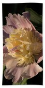 Brilliant Spring Sunshine - A Showy Pink Peony From My Garden Bath Towel