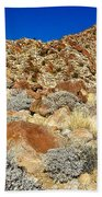 Brittlebush Leaves And Santa Rosa Mountains From Borrego Palm Canyon In Anza-borrego Desert Sp-ca Bath Towel