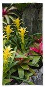 Bromeliads Bath Towel