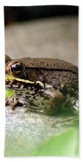 Bronze Frog Bath Towel
