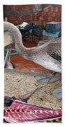 Brown Pelican At The Fish Market Bath Towel