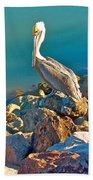 Brown Pelican In San Carlos-sonora Bath Towel