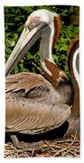 Brown Pelican Bath Towel