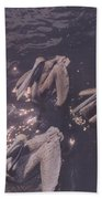Brown Pelicans Bath Towel