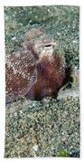 Brownstripe Octopus Burying Itself Bath Towel