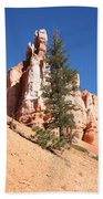 Bryce Canyon Red Fins Bath Towel