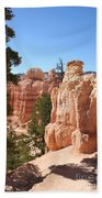 Bryce Canyon  Red Rocks Bath Towel