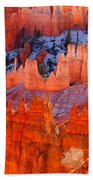 Bryce Canyon Utah Bath Towel