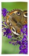 Buckeye Butterfly On Purple Flowers Bath Towel