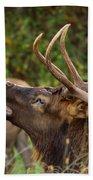 Bugling Bull Elk Bath Towel