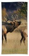 Bugling Elk With Calf Bath Towel