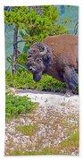 Bull Bison Near Mud Volcanoes In Yellowstone National Park-wyoming Bath Towel