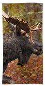 Bull Moose II Bath Towel