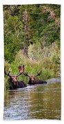 Bull Moose Summertime Spa Bath Towel