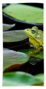Bullfrog Bath Towel