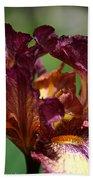 Burgundy Blossom Bath Towel