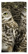 Burrowing Owls Bath Towel