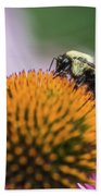 Busy Bee On Cone Flower Bath Towel