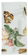 Butterflies Moths And Other Insects With A Sprig Of Apple Blossom Bath Towel