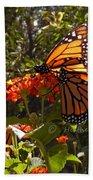 Butterflies Three Bath Towel