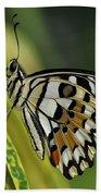 Butterfly 010 Bath Towel
