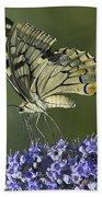 Butterfly 020 Bath Towel