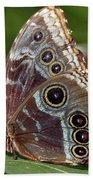 Butterfly 4 Bath Towel