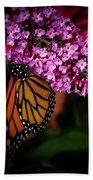 Butterfly 5 Bath Towel