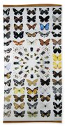 Butterfly Collection Bath Towel