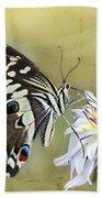 Butterfly Food At Dahlia Flower Bath Towel