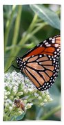 Butterfly Garden - Monarchs 07 Bath Towel