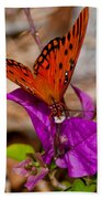 Butterfly On Bouganvilla Bath Towel