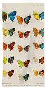Butterfly Plate Hand Towel