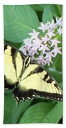 Butterfly - Swallowtail Bath Towel
